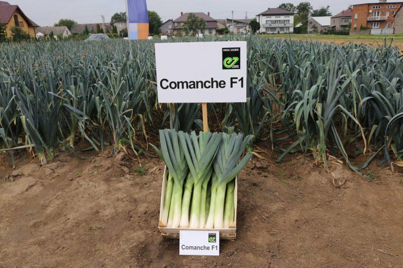 Comanche F1