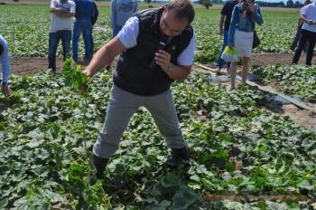 Marcin Pawlak bardzo chętnie odpowiadał na pytania zwiedzających plantację Garbatowskich