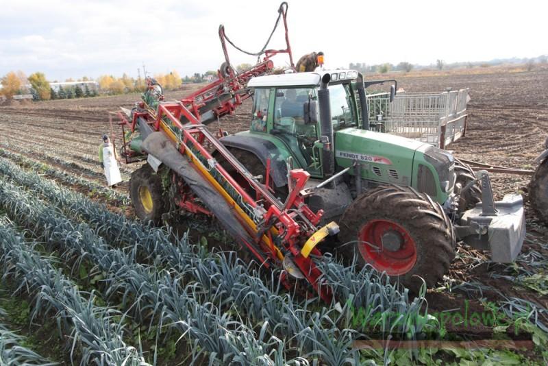 Specjalistyczne uprawy rozwijane są dzięki mechanizacji - tu kombajnowy zbiór porów - Uprawa warzyw